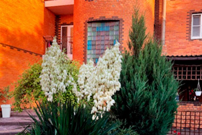 Mandarin-Hotel-Entrance
